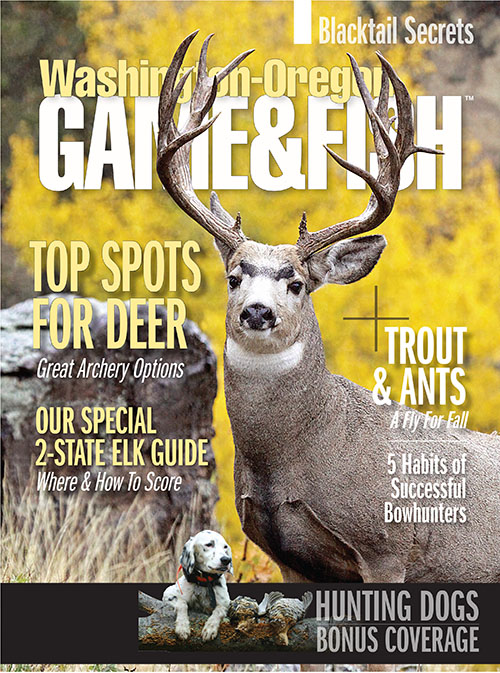 Washingtonian magazine deals